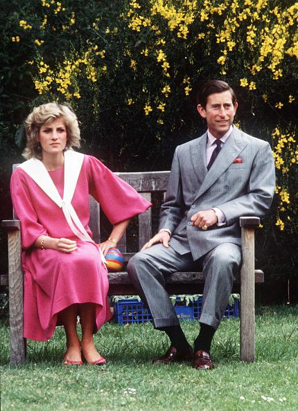 Married「Princess Diana Retrospective」:写真・画像(9)[壁紙.com]
