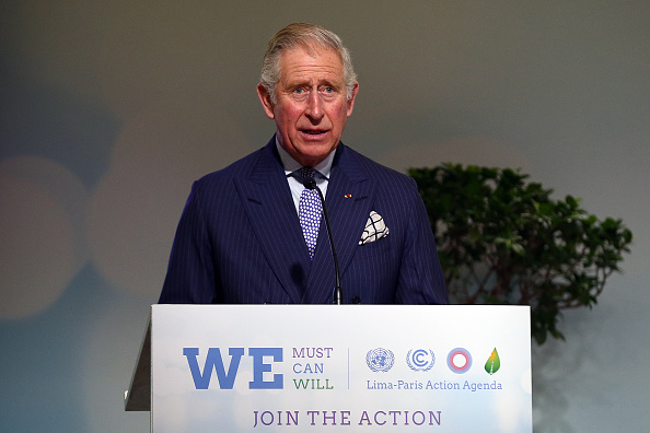 Environment「The Prince Of Wales Speaks At The Lima Paris Action Agenda Session At COP21」:写真・画像(9)[壁紙.com]
