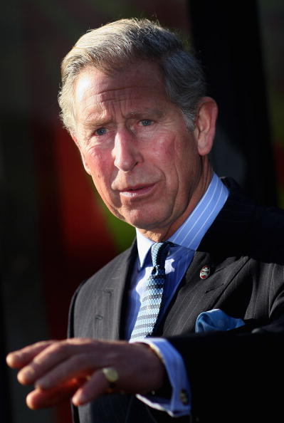 Chris Weeks「The Prince Of Wales Attends Launch: The Prince's Trust Youth Week」:写真・画像(12)[壁紙.com]