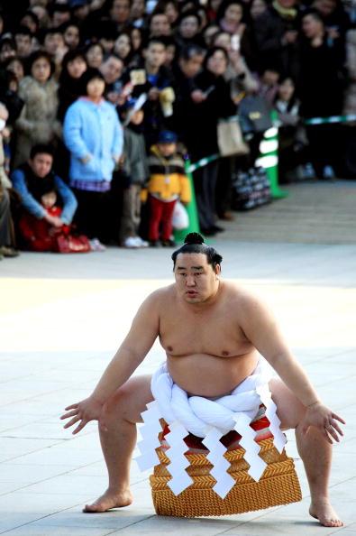朝青龍 明徳「Sumo Grand Champions Celebrate The New Year」:写真・画像(6)[壁紙.com]