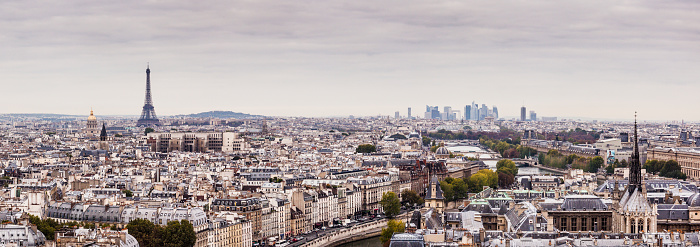 Cathedral「Panoramic view of Paris on a grey day.」:スマホ壁紙(16)