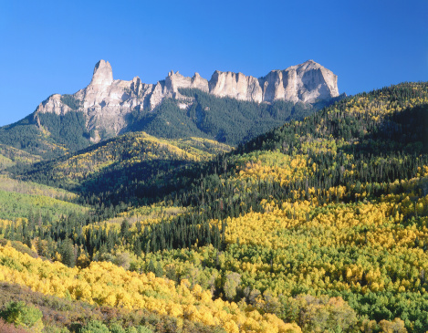 Uncompahgre National Forest「Panoramic view of autumn foliage from Chimney Rock and Courthouse Mountain. Chimney Rock, Courthouse Mountain, Uncompahgre National Forest, Colorado.」:スマホ壁紙(7)