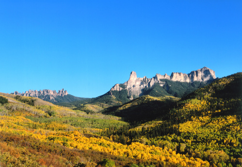 Uncompahgre National Forest「Panoramic view of Chimney Rock and Courthouse Mountain autumn foliage from Cimmarron Ridge near Owl Creek Pass. Chimney Rock, Courthouse Mountain, Cimarron Ridge, Owl Creek Pass, Uncompahgre National Forest, Colorado.」:スマホ壁紙(5)