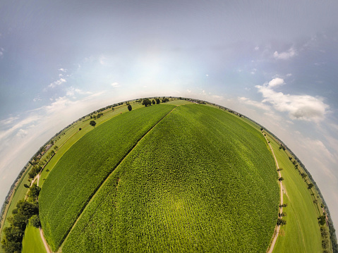 Fish-Eye Lens「360° panoramic view of corn fields」:スマホ壁紙(18)