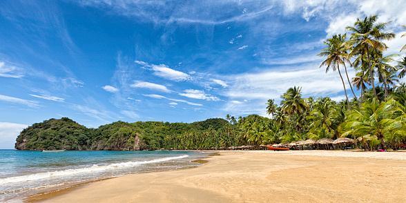Venezuela「Panoramic view of Tropical Caribbean beach with coconut trees.」:スマホ壁紙(8)