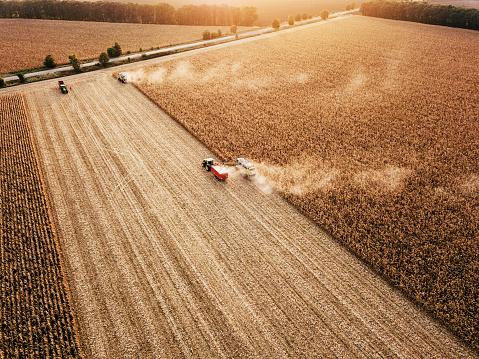 秋「収穫のフィールドのパノラマ ビュー」:スマホ壁紙(19)
