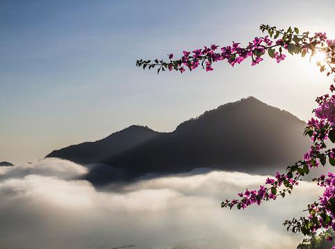 Mt Agung「Panoramic view of Batur Lake and Mount Agung at sunrise from Kintamani, Bali, Indonesia」:スマホ壁紙(10)