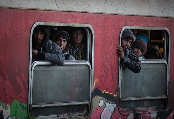 2015-2016 European Migrant Crisis「Thousands Of Migrants Continue To Arrive Into Macedonia」:写真・画像(14)[壁紙.com]