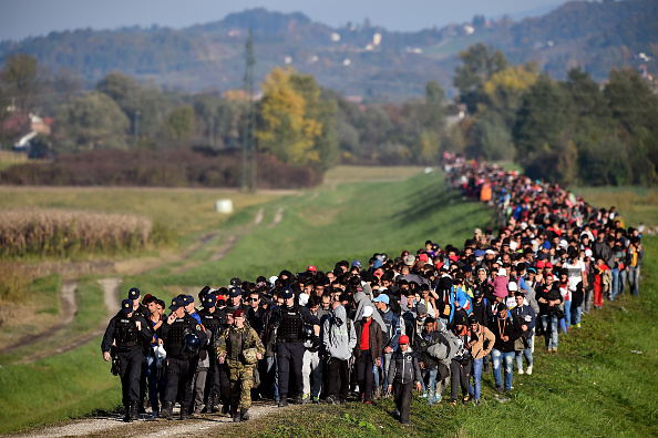 Slovenia「Migrants Cross Into Slovenia」:写真・画像(1)[壁紙.com]