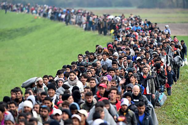 Migrants Cross Into Slovenia:ニュース(壁紙.com)