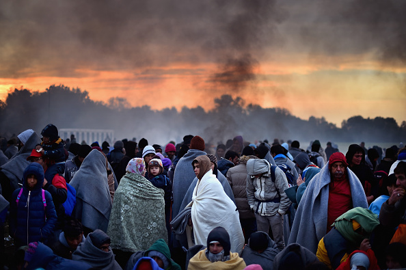Slovenia「Migrants Cross Into Slovenia」:写真・画像(13)[壁紙.com]