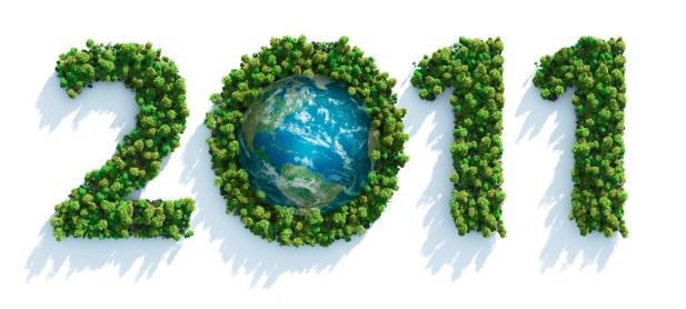 Amazon Rainforest「Green 2011」:スマホ壁紙(14)