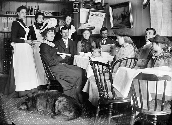 Domestic Animals「Woods Restaurant,」:写真・画像(3)[壁紙.com]
