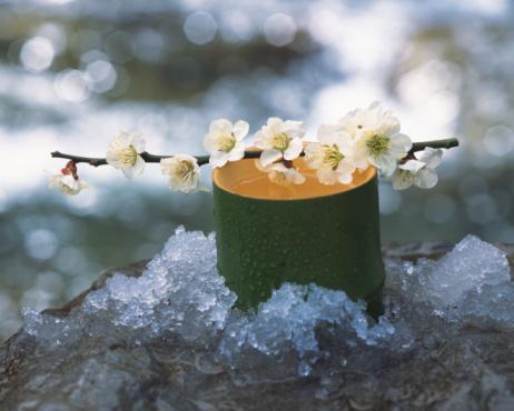梅の花「Plum blossom and bamboo cylinder」:スマホ壁紙(10)