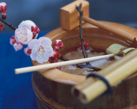 梅の花「Plum blossoms on the barrel」:スマホ壁紙(3)
