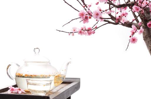 梅の花「Plum blossom and teapot」:スマホ壁紙(16)