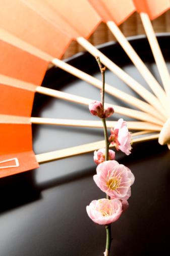 梅の花「Plum blossoms and a folding fan」:スマホ壁紙(14)