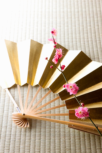 梅「Plum blossoms and a folding fan」:スマホ壁紙(8)