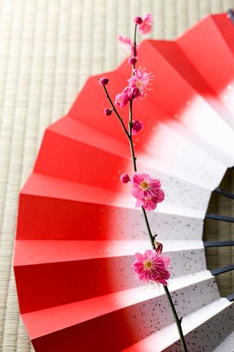 梅の花「Plum blossoms and a folding fan」:スマホ壁紙(17)