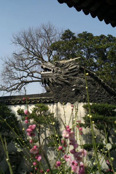 Plum「Scenery Of Yuyuan Garden」:写真・画像(11)[壁紙.com]