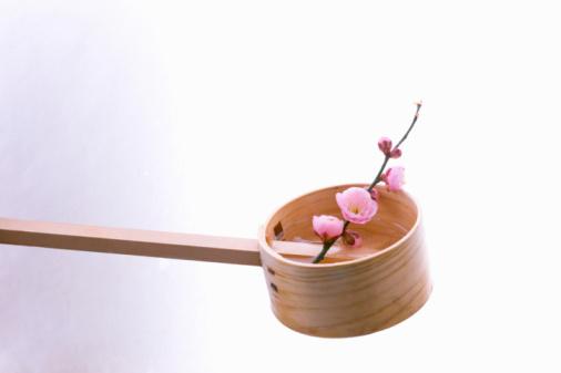 梅の花「Plum blossoms in a wooden ladle」:スマホ壁紙(11)