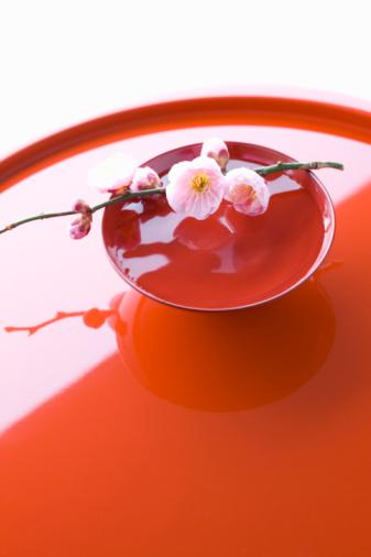 梅の花「Plum blossoms on a sake cup」:スマホ壁紙(19)