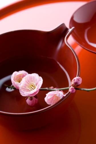 梅の花「Plum blossoms on a sake cup」:スマホ壁紙(14)