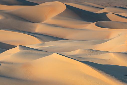 Arid Climate「Dunes of the Empty Quarter」:スマホ壁紙(13)