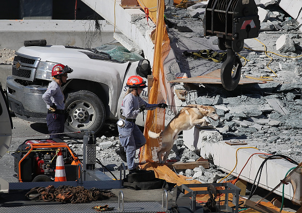 Miami「Multiple Fatalities Reported After Collapse Of Pedestrian Bridge In Miami」:写真・画像(16)[壁紙.com]