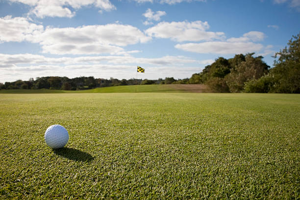 USA, Massachusetts, Golf ball on grass in golf course:スマホ壁紙(壁紙.com)