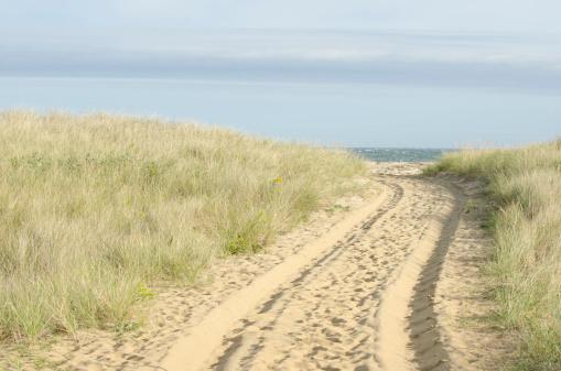 Water's Edge「USA, Massachusetts, Nantucket, Path with tyre track」:スマホ壁紙(19)