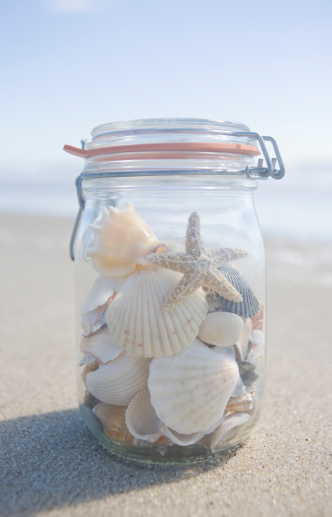 Souvenir「USA, Massachusetts, close up of shells in jar」:スマホ壁紙(0)