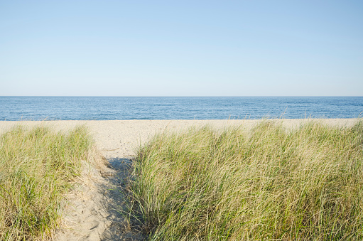 ビーチ「USA, Massachusetts, Nantucket, Siasconset, Path leading to beach」:スマホ壁紙(13)