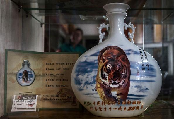 Wilderness Area「China's Siberian Tiger Farm」:写真・画像(2)[壁紙.com]