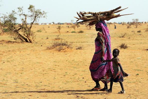 Non-Urban Scene「Dafur Refugees Overwhelm Camps In Chad」:写真・画像(16)[壁紙.com]