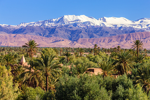 Atlas Mountains「Moroccan oasis and High Atlas mouintain range」:スマホ壁紙(0)