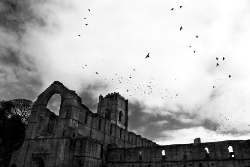 Abbey - Monastery「The Birds」:スマホ壁紙(1)