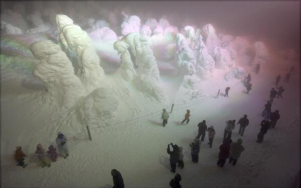 Snow「Silver Frost Is Illuminated At Zao Ski Resort In Japan」:写真・画像(2)[壁紙.com]