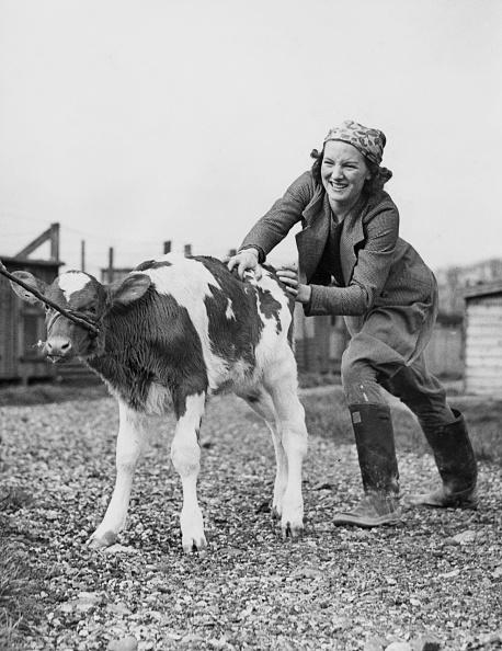 Farm「Working Holiday」:写真・画像(18)[壁紙.com]