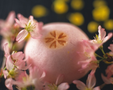 Wagashi「Wagashi called Manjyu with flower heads, yellow petal visible in background, Differential Focus」:スマホ壁紙(17)