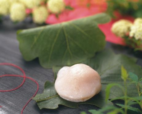 Wagashi「Wagashi called Kashiwamochi, Japanese sweet on leaf, flowers visible in background, Differential Focus」:スマホ壁紙(12)