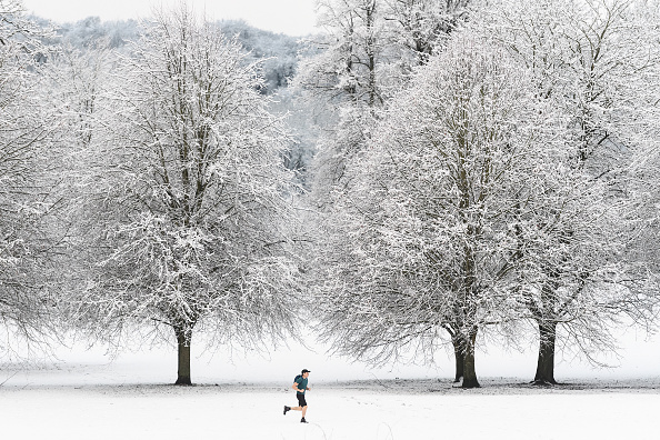 Snow「Winter Snow Arrives In The South Of England」:写真・画像(6)[壁紙.com]