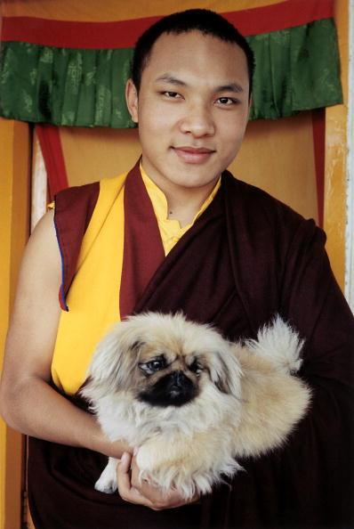 Tom Stoddart Archive「17th Karmapa,The Boy God」:写真・画像(15)[壁紙.com]