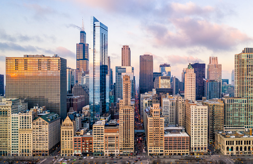 North America「Downtown Chicago Cityscape From Grant Park」:スマホ壁紙(7)