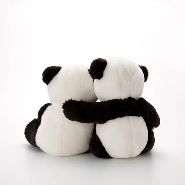 Two stuffed panda bear hugging, rear view, studio shot:スマホ壁紙(壁紙.com)