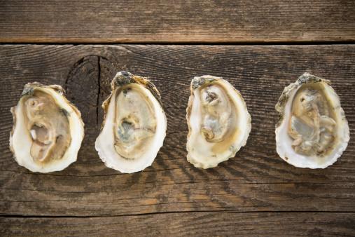 Mollusk「Studio shot of oysters」:スマホ壁紙(2)