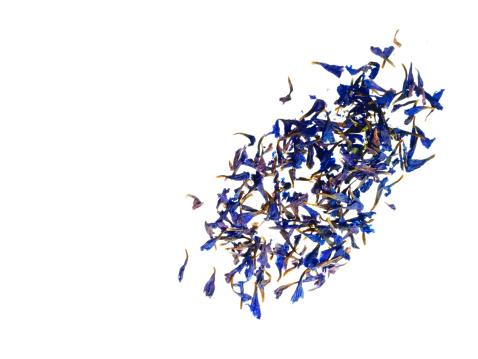 Bergamot「Studio shot of bergamot petals」:スマホ壁紙(2)