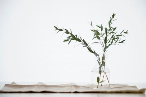 Branch - Plant Part「Studio Shot of eucalyptus twig in glass vase」:スマホ壁紙(0)