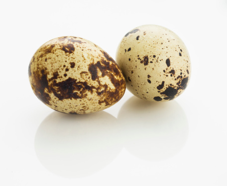Quail Egg「Studio shot of quail eggs」:スマホ壁紙(9)
