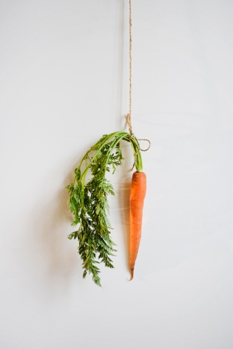 Well-dressed「Studio shot of carrot hanging by string on the wall」:スマホ壁紙(0)